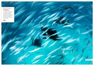 Issue 18, Oceanographic Magazine, Todd Thimios