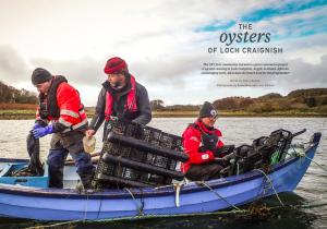 Issue 18, Oceanographic Magazine, Oysters, Loch Craignish