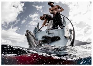 Issue 18, Oceanographic Magazine, Thresher sharks, Shawn Heinrichs, fishermen