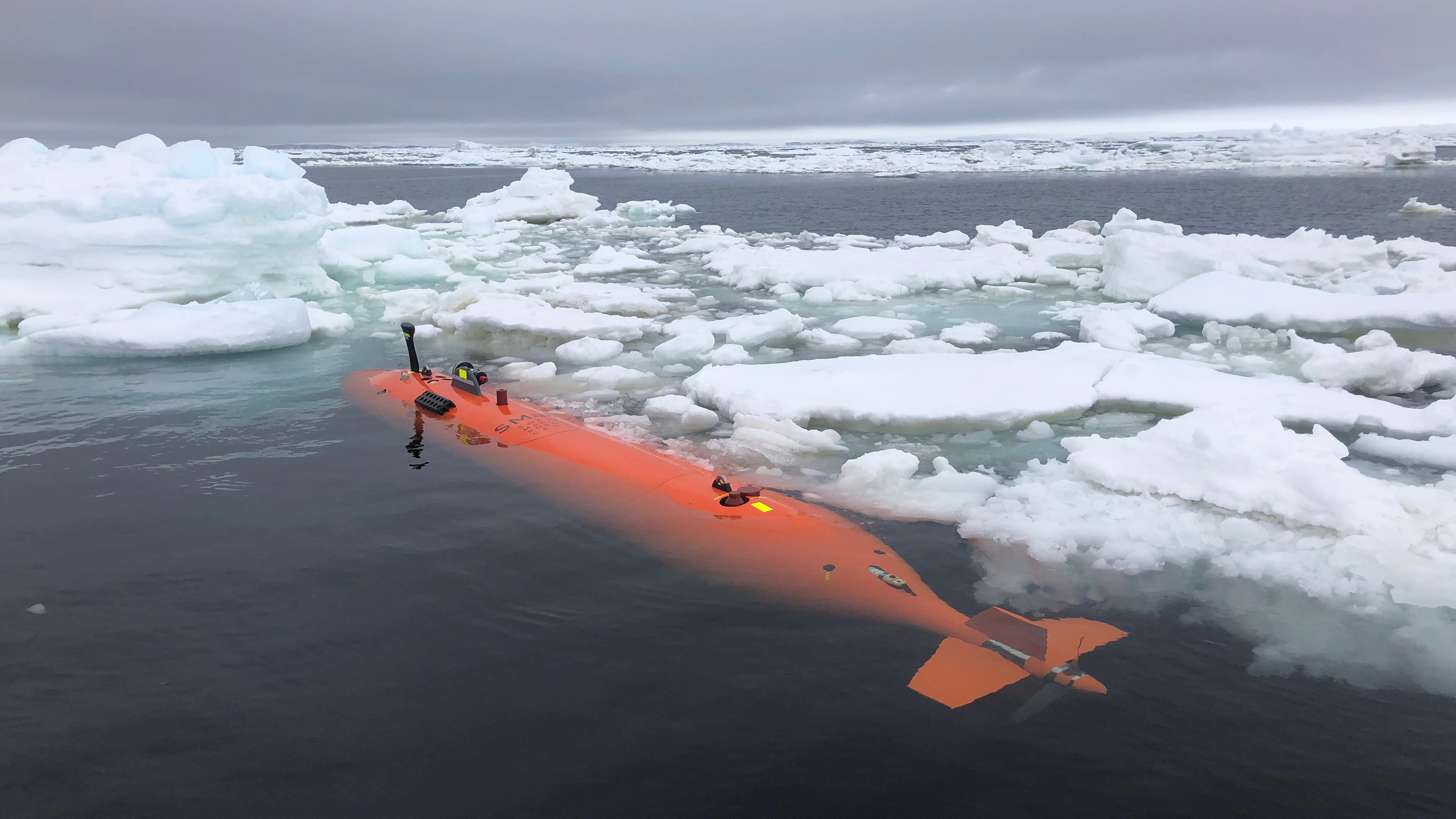 uncrewed submarine Ran
