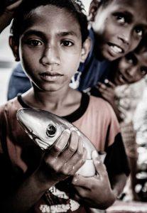 thresher shark indonesia alor