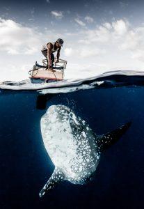 sunfish fisher indonesia alor