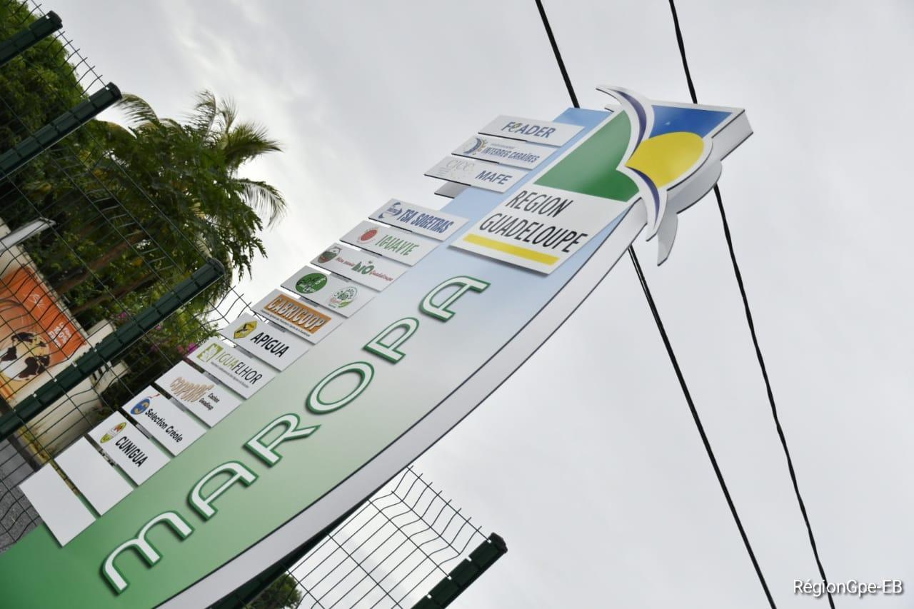 Guadeloupe : Vers le lancement officiel du Plan Stratégique régional pour une transition agro-écologique en Guadeloupe