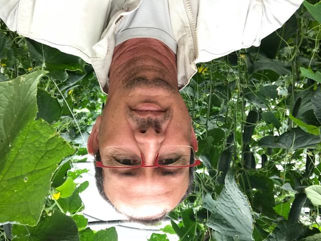 Renouvellement de l'ODEADOM : Le candidat Joel Sorres affirme vouloir faire de l'ODEADOM, le véritable porte-voix national et européen de l'agriculture des Outre-mer