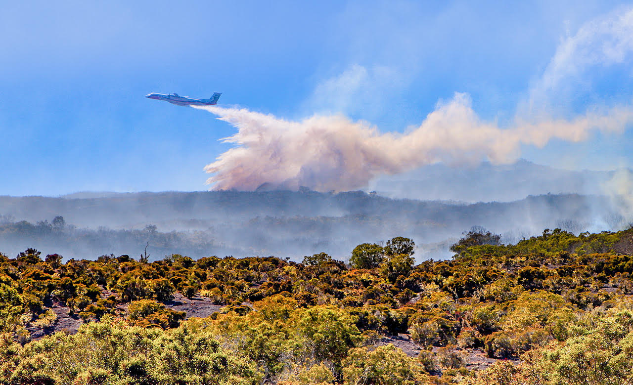 La Réunion : Plan d'action « post-incendie » après le feu du Maïdo