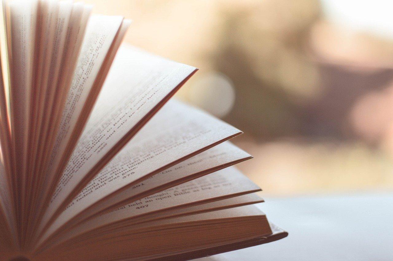 Prix littéraire Fetkann! Maryse Condé 2020 : Une 17 ème édition qui s'inscrit dans un contexte de résurgence de la mémoire active