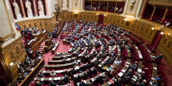 Le Sénat adopte un amendement qui prévoit 2,5 milliards d'euros supplémentaires pour les Outre-mer dans le Plan de Relance