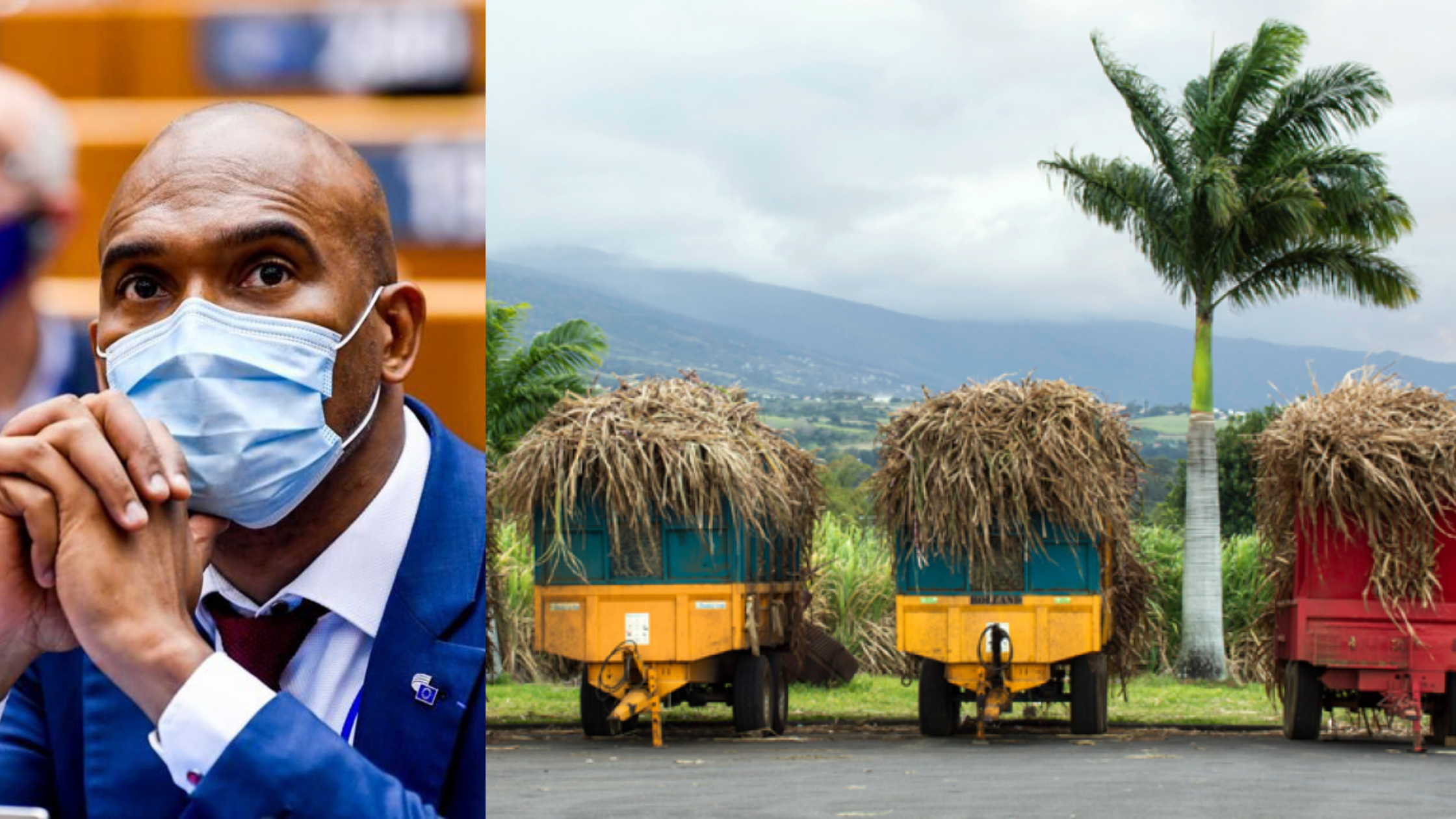 EXPERTISE.Agriculture et résilience pour les régions ultrapériphériques … Oui, mais comment ? par Joël Destom, Membre du Comité économique et social européen