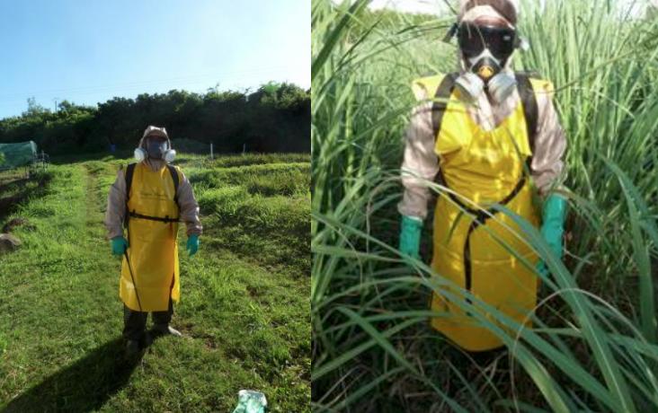 Innovation : Une société brésilienne lauréate du Challenge EPIDOM, en faveur de la sécurité des agriculteurs ultramarins