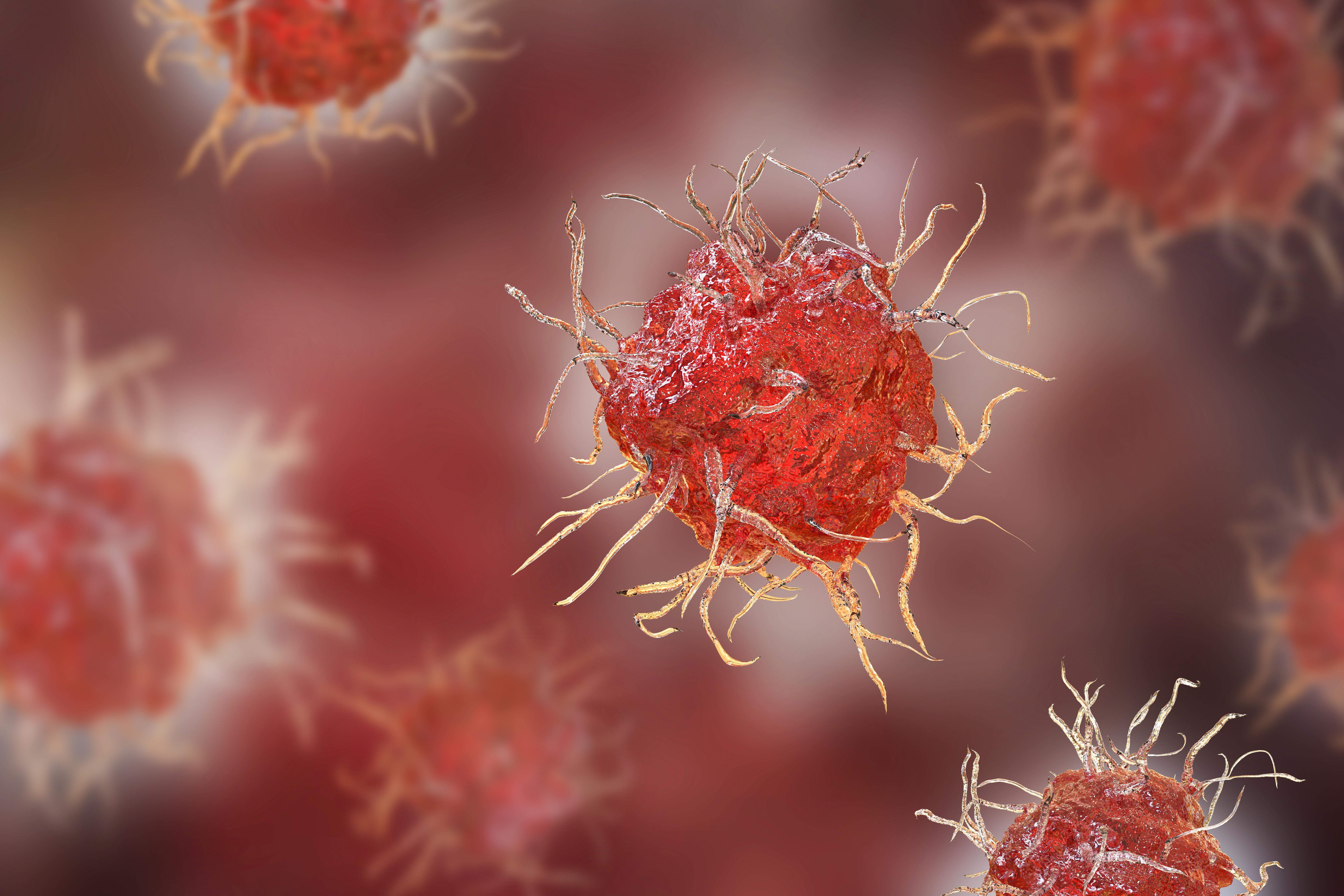 Représentation d'une cellule dentritique