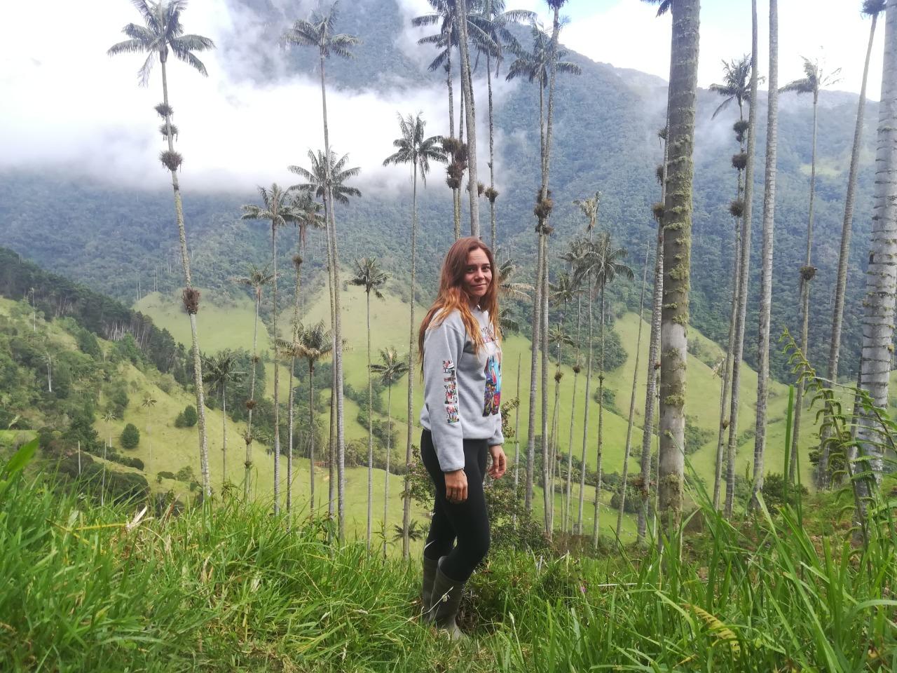 A la découverte de la Valle de Cocora - Colombie