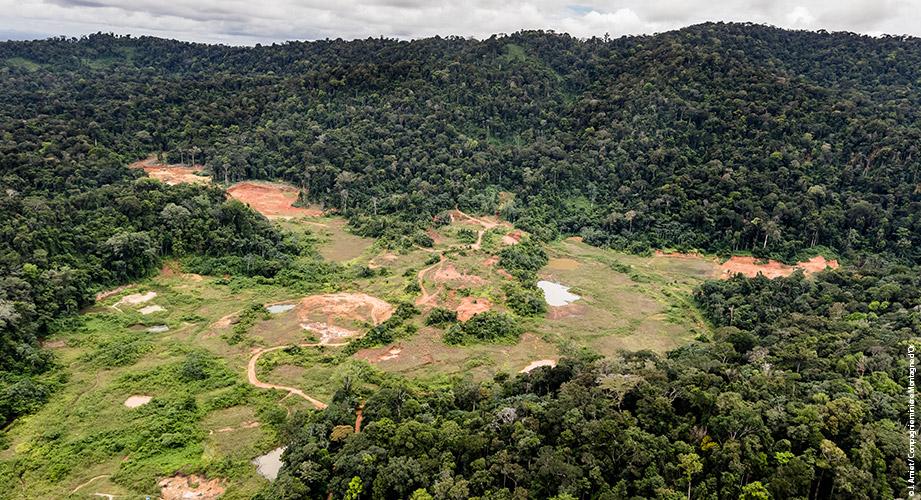 Guyane: la justice enjoint l'État de «prolonger» les concessions controversées de Montagne d'or