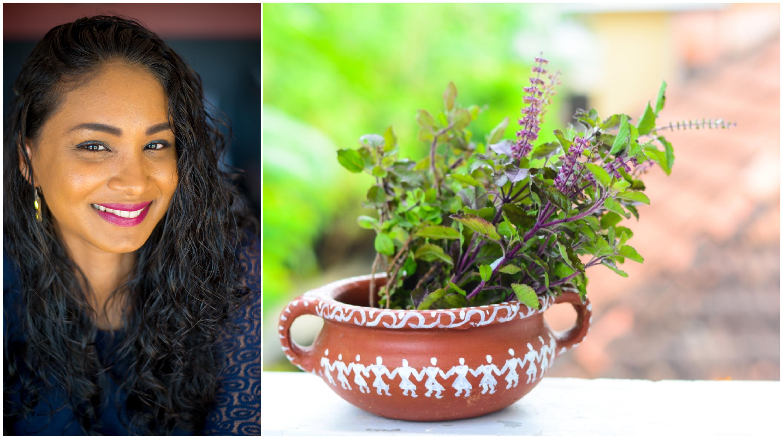 EXPERTISE. Santé : Débutez l'année avec une plante sacrée des Outre-mer