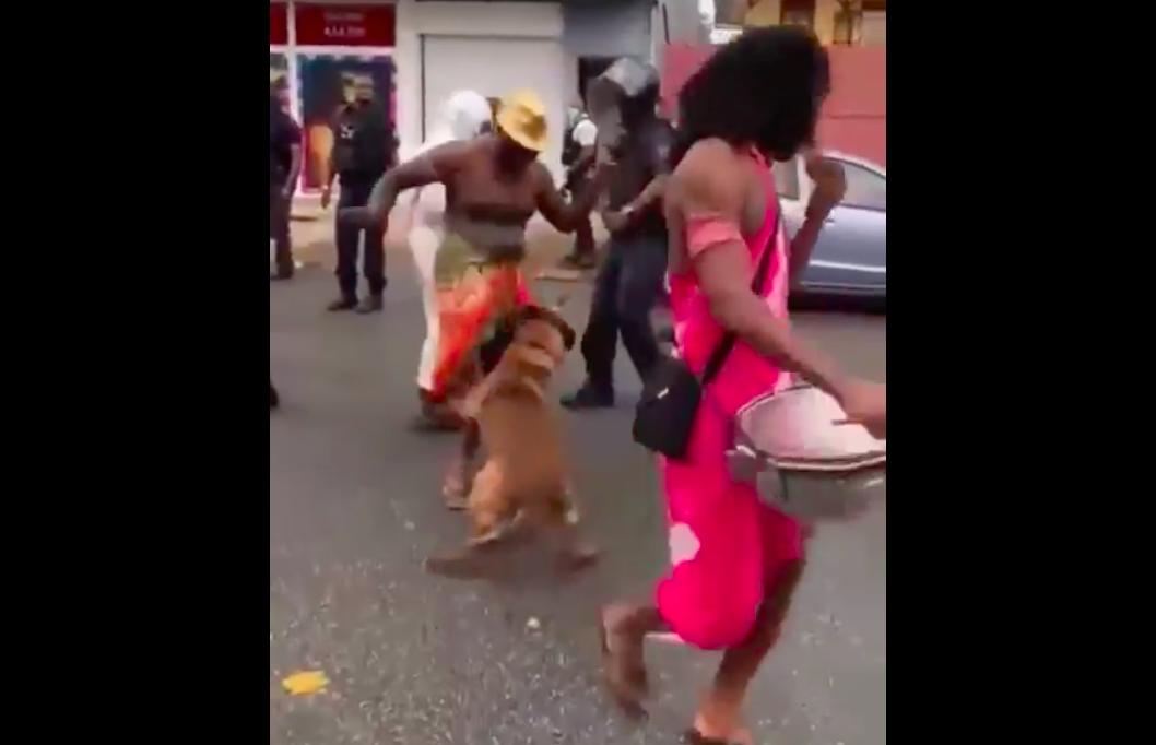 Guyane : Vives réactions après l'usage de chien de maintien de l'ordre pour disperser un carnaval non-autorisé