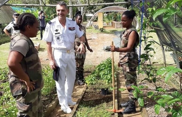 Guadeloupe : Le RSMA et la chambre d'agriculture signent une convention pour la filière banane