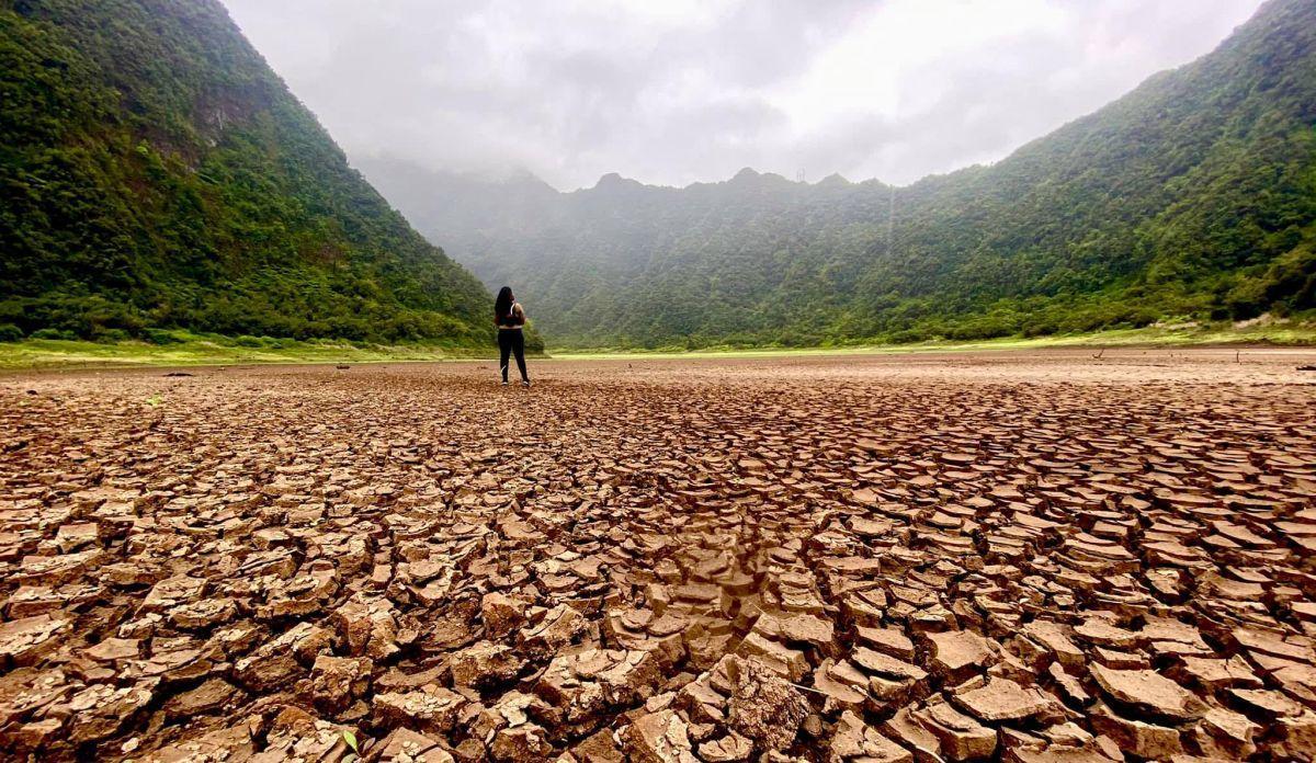 Sécheresse à La Réunion: Philippe Naillet demande un état de catastrophe naturelle