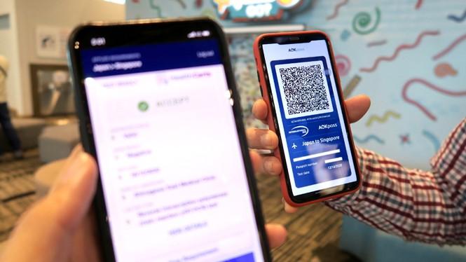 Air Caraïbes et French Bee testent un certificat digital sanitaire, passeport sanitaire avant l'heure