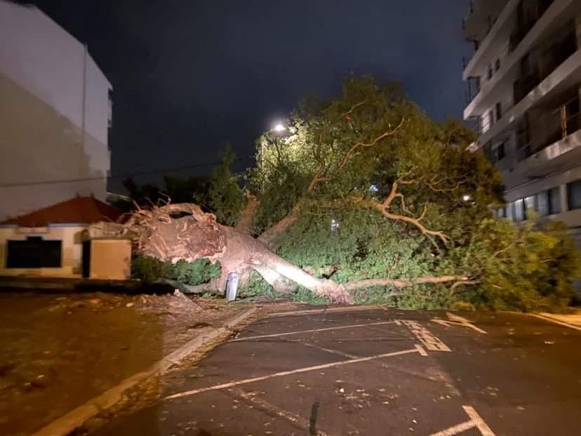 Nouvelle-Calédonie : Le cyclone Niran a fait deux blessés et des dégâts matériels