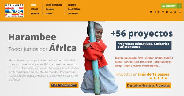 Harambee entre los proyectos beneficiarios de Mutua madrileña