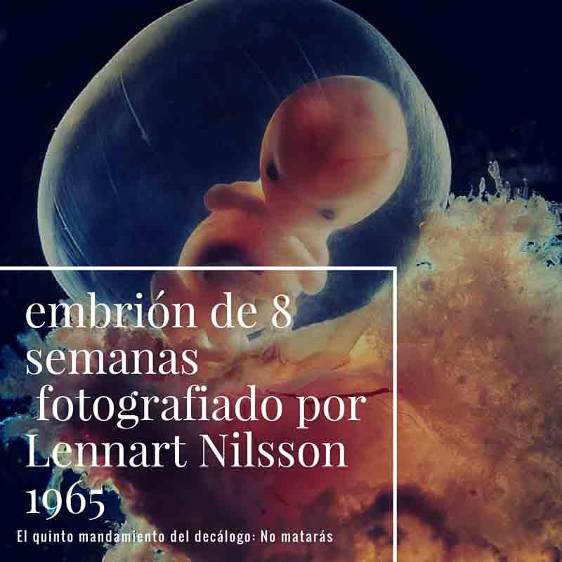 """El aborto y el """"no matarás"""""""