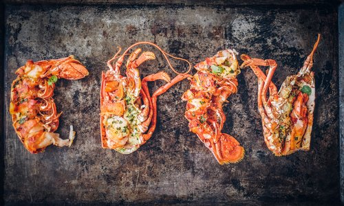 The Art of Culinary Photography: Introducing the EPAs New Food Category