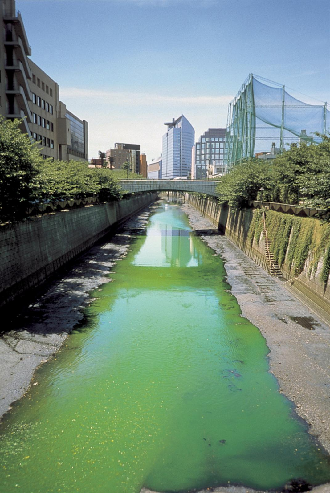 Green river • Artwork • Studio Olafur Eliasson