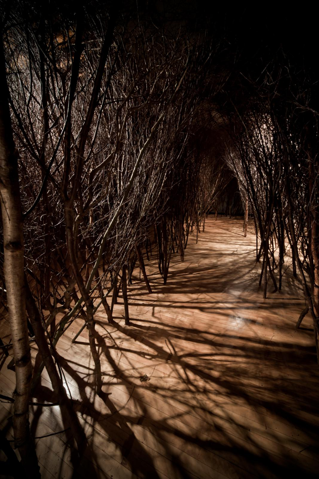 The forked forest path • Artwork • Studio Olafur Eliasson