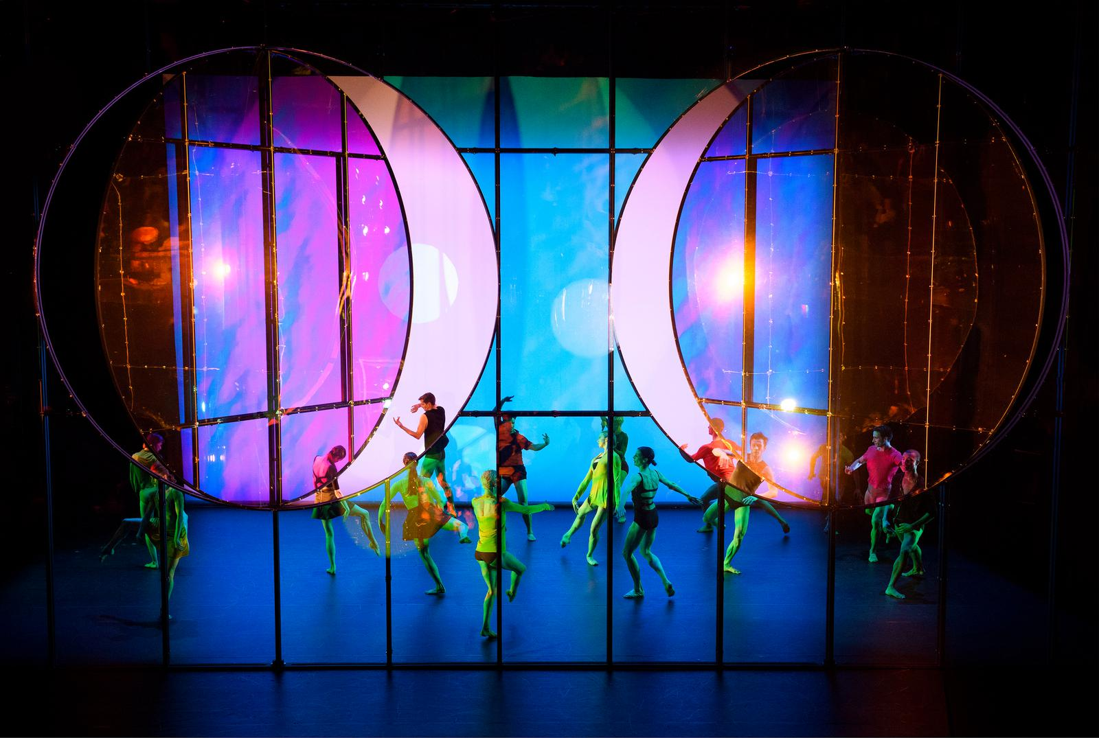 Image result for tree of codes ballet