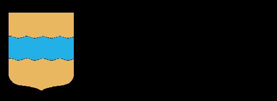 Vk logotyp f%c3%a4rg