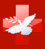 Научно-исследовательский институт неотложной детской хирургии и травматологии (НИИ НДХиТ)