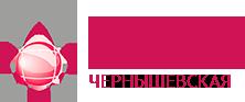ЦМРТ Чернышевская