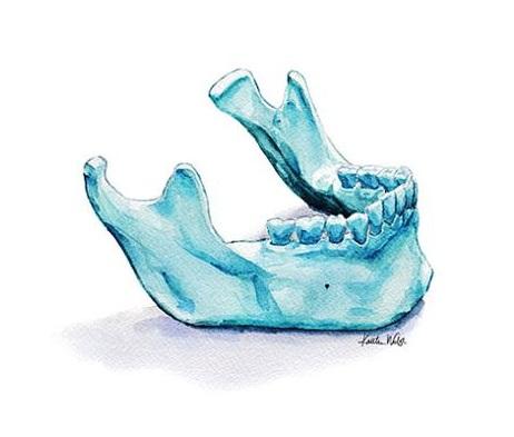 КТ челюстно-лицевой области