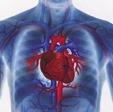 Заболевания в кардиологии