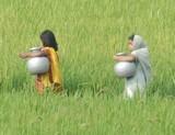 water20bangladesh.jpg