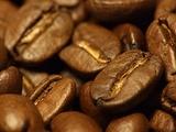 koffiebonen.bmp.jpg