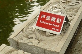 refuse_to_feed.jpg