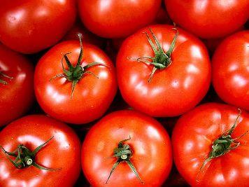 tomaat_flickrcc400x266.jpg