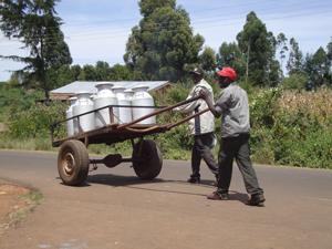 melkveehouders in Kenia