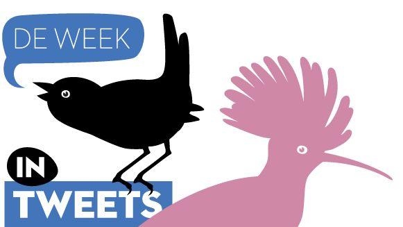 week-in-tweets_5.jpg
