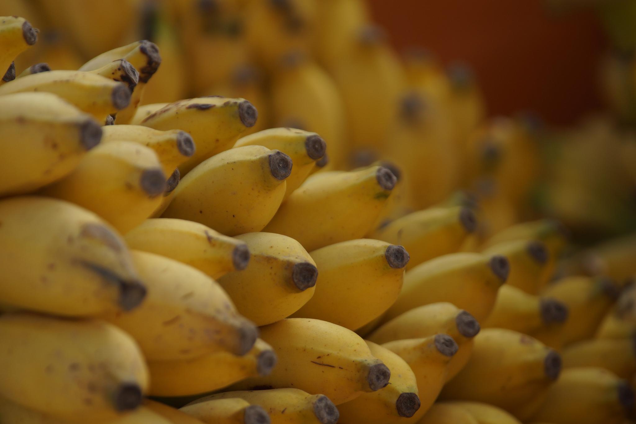 bananen_flickr.jpg