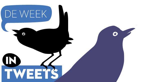 week-in-tweets_2.jpg