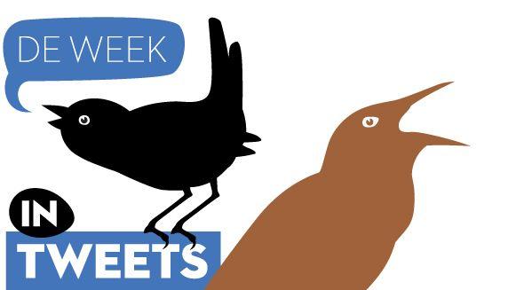 week-in-tweets_4.jpg