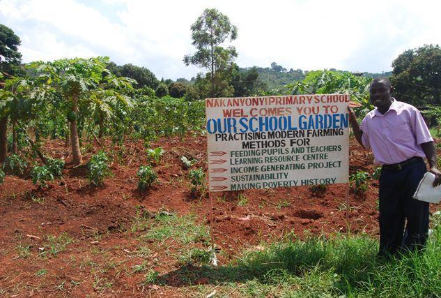 school_garden.jpg