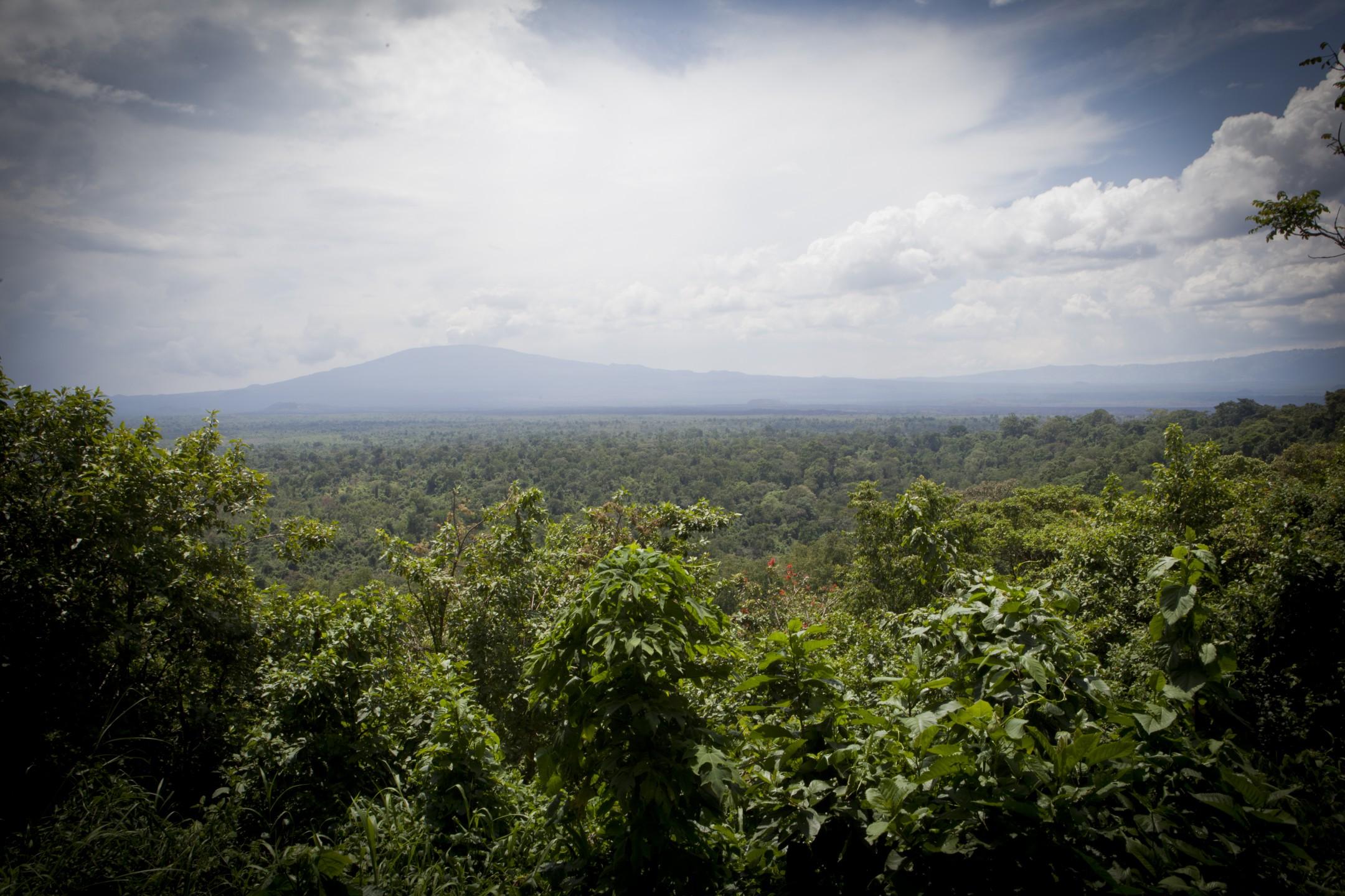 Virunga in Oost-Congo wordt geteisterd door stroperij en honger naar olie