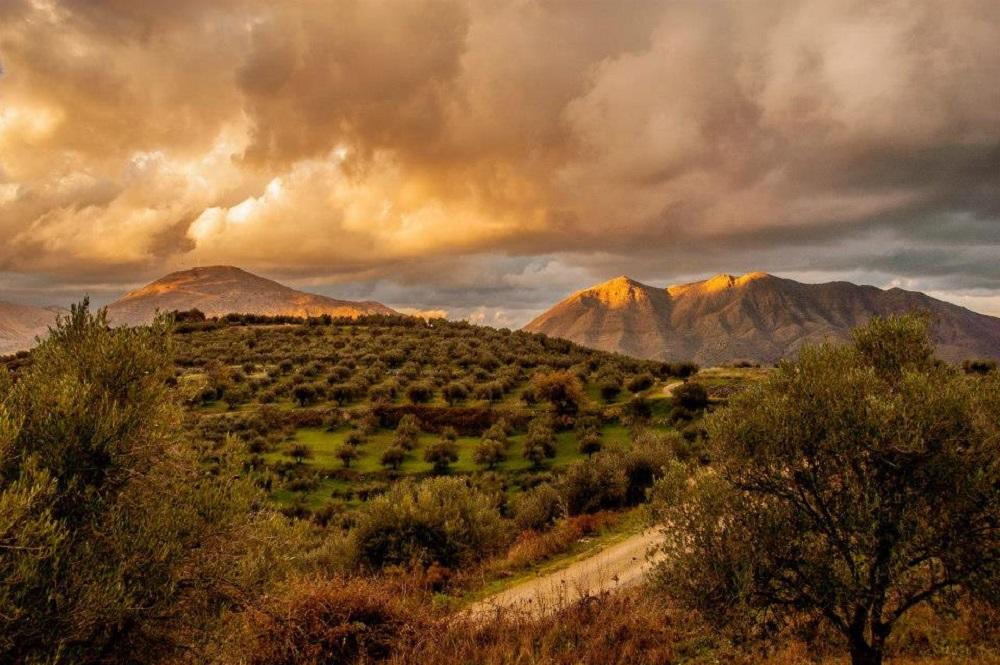 Kreta is biologisch