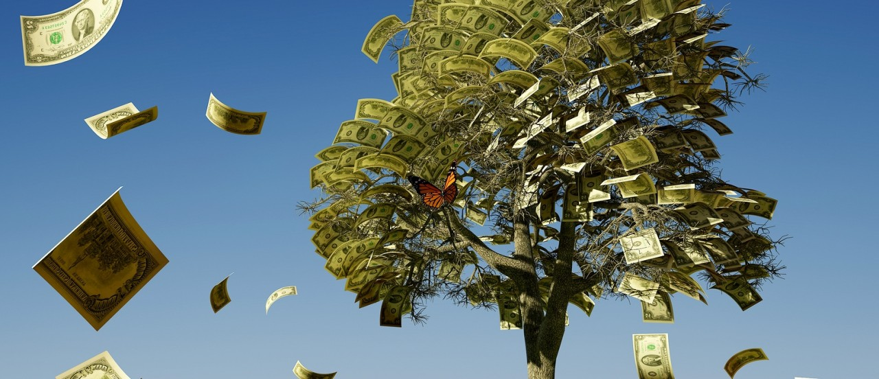 student-loan-money-tree.jpg