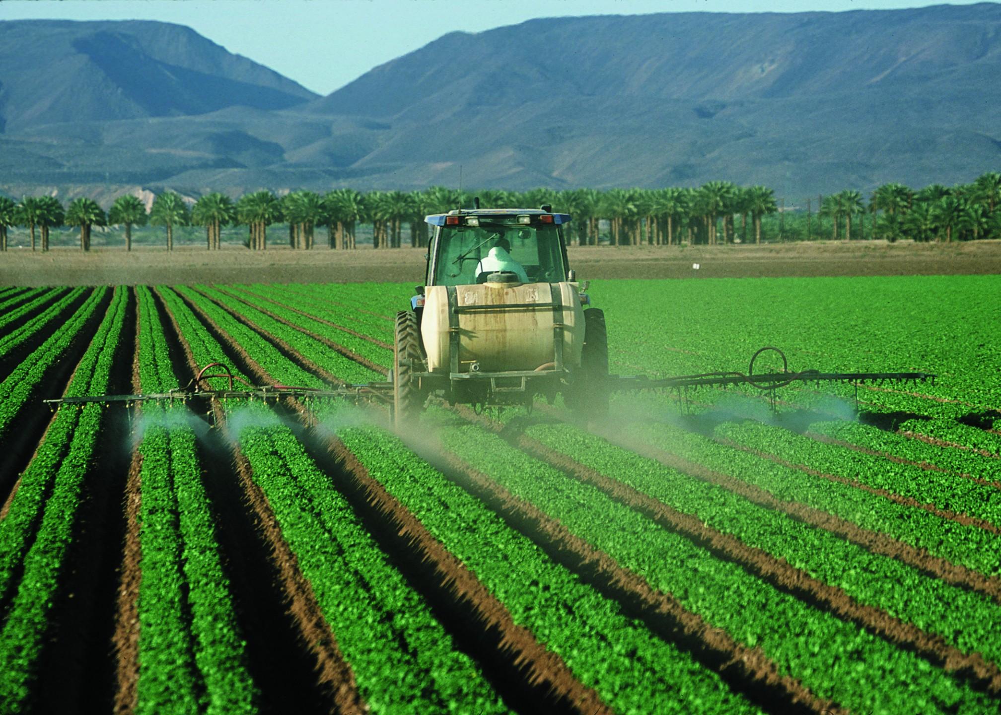 Hormoonverstorende stoffen in pesticiden zijn nu nog verboden door de EU, maar onder invloed van de VS en TTIP kan dat snel veranderen