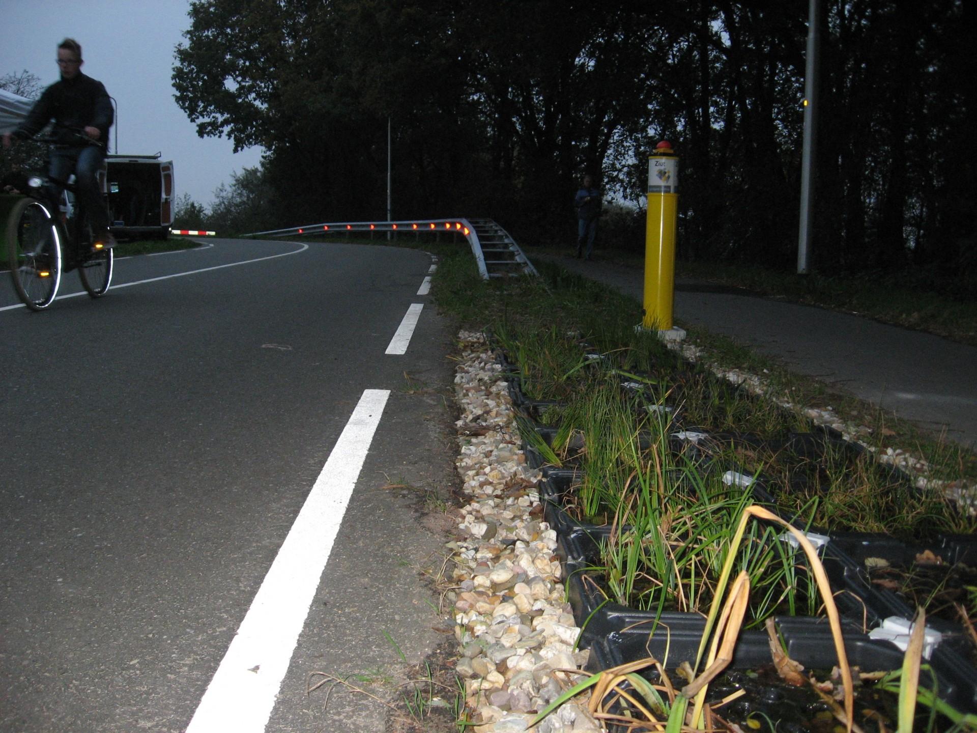Elektriciteitstuintjes van Plant-e langs de A12 tussen Ede en Wageningen.