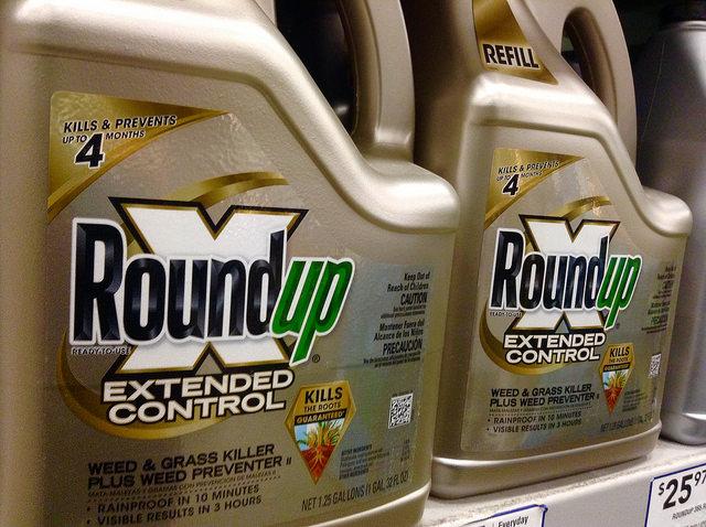 Europa stemt over wel of geen verbod op Roundup van Monsanto