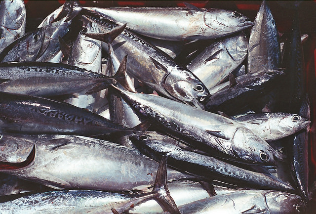 vis en keurmerken